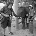 Kiss Babar/Camp des éléphant près de Chiang Mai