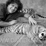 Joujou avec un Tigre !